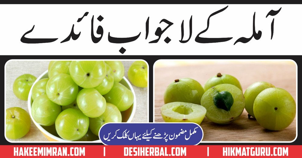 Amla (Gooseberry) Kiya hy Aur Amla Benefits in Urdu - Desi
