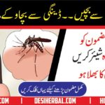 Dengue Fever Symptoms & Treatment in Urdu Hadi Tor Bukhar ka Elaj