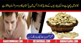 Top Foods For Sugar or Diabetic Patients in Urdu