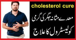 cholesterol cureمعدے مثانہ جگر کی گرمی وکولیسٹرول کا علاج