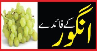 Angoor ky faiday انگور کے فائدے