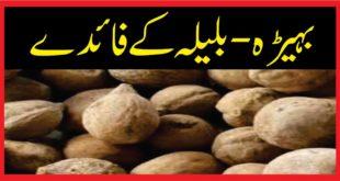 Benefits of Bahera-بہیڑہ-بلیلہ کے فائدے