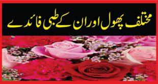 مختلف پھول اور ان کے طبی فائدے