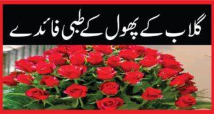 گلاب کے پھول کے طبی فائدے