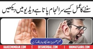 Kan (Ears) Kaisy Sunty Hain Video Documentry
