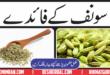 Benefits Of Fennel Seeds (Saunf) in Urdu