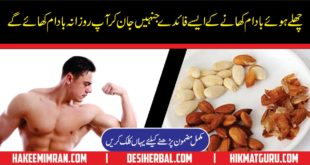 Almond Benefits Urdu Badam Ke Fawaid By Hakeem imran Kamboh 1