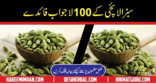Benefits Of Cardamom In Urdu Elaichi Kay Faiday 2