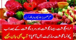 Haram Gosht Bimar Gosht Aur Murda Gusht K Baad Ab Yeh Konsa Gosht Market Main A gaya.