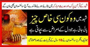 Honey For Heart Diseases   Dil Ki Bimariyan Ka Ilaj Shahed Sy   Dil Ki Bimari Ka Ilaj In Urdu  